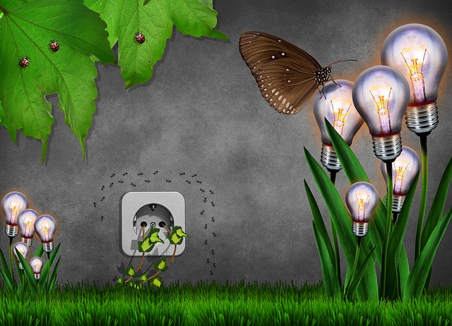 avenir-prometteur-environnement-quotidien-verneco